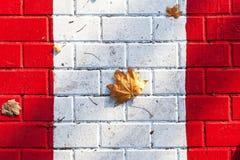 Кленовый лист на белом crosswalk нашивки Стоковая Фотография