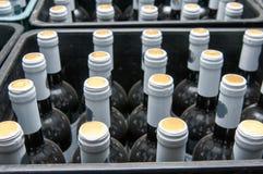 Клети вина Стоковое Изображение RF
