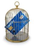 Клетка золота с кредитной карточкой (включенный путь клиппирования) Иллюстрация вектора