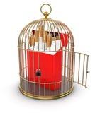 Клетка золота с пакетом сигареты (включенный путь клиппирования) Иллюстрация вектора
