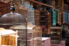 Клетка птицы на рынке птицы Стоковое Изображение