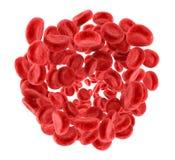 Клетки крови, стоковое фото rf