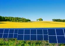Клетки солнечной энергии с рапсом field как backgrop Стоковое Изображение RF