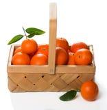 Клеть зрелых tangerines с зелеными листьями Стоковые Фотографии RF