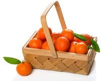 Клеть зрелых tangerines с зелеными листьями Стоковое фото RF