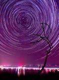 К звездам Стоковая Фотография