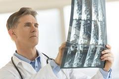 Клиника доктора Analyzing Рентгеновского снимка Сообщать В Стоковые Изображения