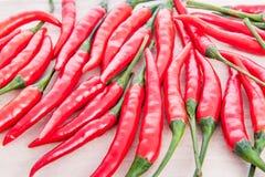 клиппирование chili предпосылки возражает белизну перца путей Стоковая Фотография
