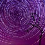 К небу звезд Стоковые Изображения RF
