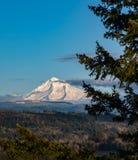 Клобук Mt с полной хламидой снега на день ` s зимы Стоковые Изображения