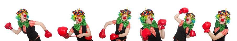 Клоун в различных представлениях изолированный на белизне Стоковые Фотографии RF