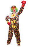 Клоун при перчатки бокса изолированные на белизне Стоковые Фотографии RF