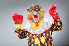 Клоун при перчатки бокса изолированные на белизне Стоковая Фотография RF