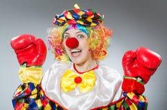Клоун при перчатки бокса изолированные на белизне Стоковое Изображение