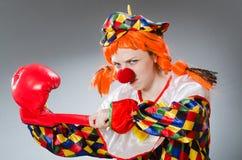 Клоун при перчатки бокса изолированные на белизне Стоковые Фото