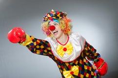Клоун при перчатки бокса изолированные на белизне Стоковое Изображение RF