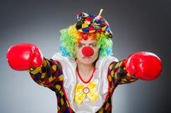 Клоун с перчатками бокса в смешной концепции Стоковое Изображение