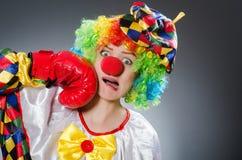 Клоун с перчатками бокса в смешной концепции Стоковая Фотография