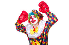 Клоун с перчатками бокса Стоковые Изображения