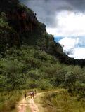 к путю водопада Стоковая Фотография