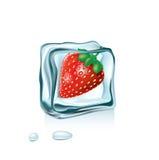 Клубника в изолированном кубе льда Бесплатная Иллюстрация