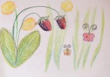 Клубника и бабочка, иллюстрация карандаша Стоковое Фото