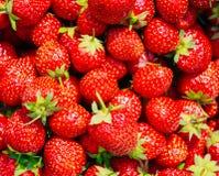 Клубника Клубники Органическая предпосылка ягод Стоковое фото RF