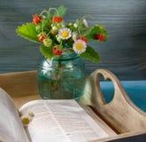 Клубника около книги на подносе Стоковая Фотография