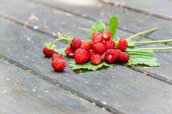 клубника пущ ягод красная одичалая стоковая фотография rf