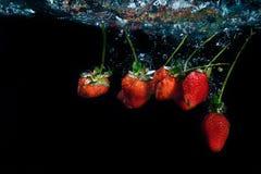 Клубника упала в воду с выплеском на черном backgro Стоковая Фотография