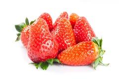Клубники изолированные на белых ягодах плодоовощей еды предпосылки Стоковые Фото