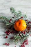 Клюква, tangerine и ветви рождественской елки Стоковая Фотография RF