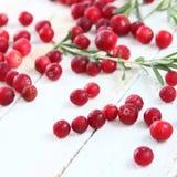 Клюквы и розмариновое масло ягод Стоковые Изображения RF
