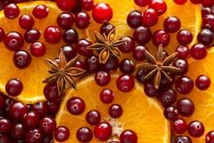 Клюквы, оранжевые куски и анисовка звезды Стоковые Изображения RF