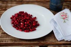 Клюквы ягоды зрелые Стоковые Фото