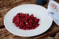 Клюквы ягоды зрелые Стоковая Фотография RF