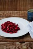 Клюквы ягоды зрелые Стоковое Изображение