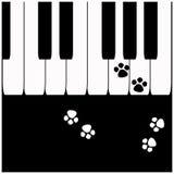 Ключи рояля с следами ноги кота бесплатная иллюстрация