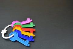 Ключи с пластичным кольцом Стоковые Изображения