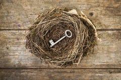 Ключ в гнезде Стоковое Фото