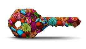 Ключ лечения заболеванием Стоковые Изображения