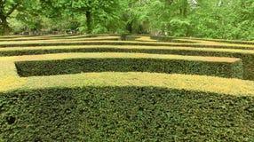 Лабиринт сада Стоковые Изображения RF