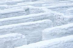 Лабиринт снега зимы стоковые изображения