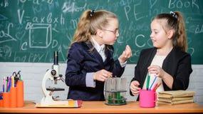 Лаборатория биологии Счастливый гений Исследование химии в лаборатории Ученый маленьких девочек с микроскопом гений девушек внутр стоковое фото
