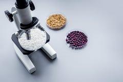 Лаборатория для анализа еды Рис под микроскопом на сером copyspace предпосылки стоковые фотографии rf