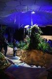 Лаборатория Lowline на выходных дома Open NY Стоковая Фотография RF
