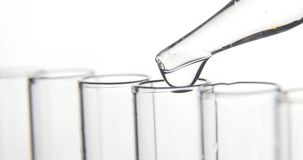 Лабораторное исследование, пипетка капает прозрачные химикаты в пробирки сток-видео