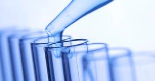 Лабораторное исследование химической лаборатории, пипетка капает прозрачные химикаты в голубые пробирки видеоматериал