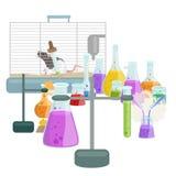 Лабораторное оборудование исследования образования химии, стеклянная лампа научной лаборатории, вектор Стоковая Фотография RF