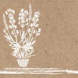 Лаванда в цветочном горшке Vector иллюстрация с местом для текста на бумаге kraft Приглашение, поздравительная открытка бесплатная иллюстрация